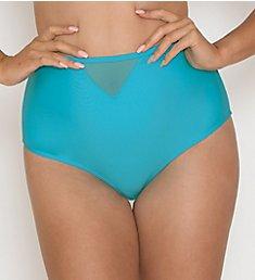 Curvy Kate Sheer Class High Waist Brief Swim Bottom CS1505