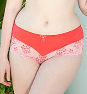Curvy Kate Temptress Brief Panty SG2803