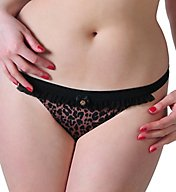 Curvy Kate Scantilly Pounce Thong ST2102